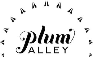 Plum Alley: Promoting Female Founders